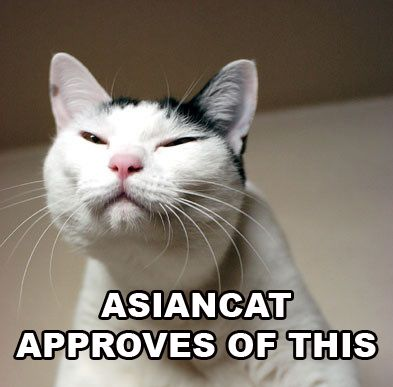 1161382100-Asiancatapproves.b.jpg