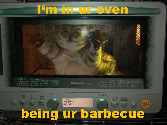 http://www.acc.umu.se/~zqad/cats/1164814158-oven.jpg