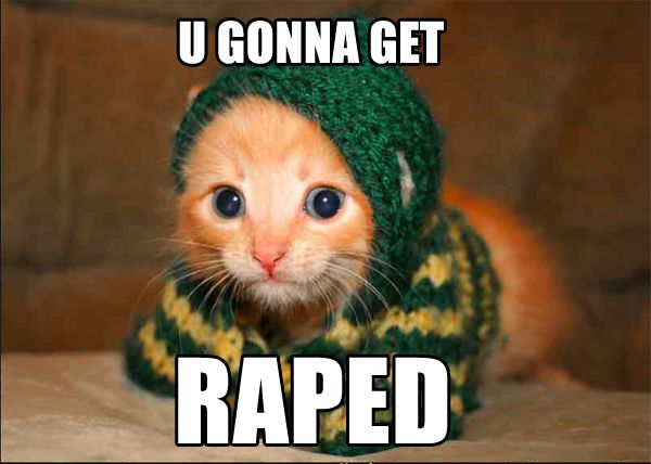 1169988171-Gonna_get_raped_cat.b.jpg